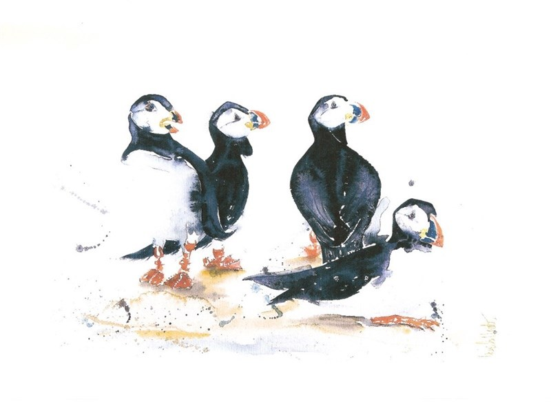 One of Angela's puffin pictures