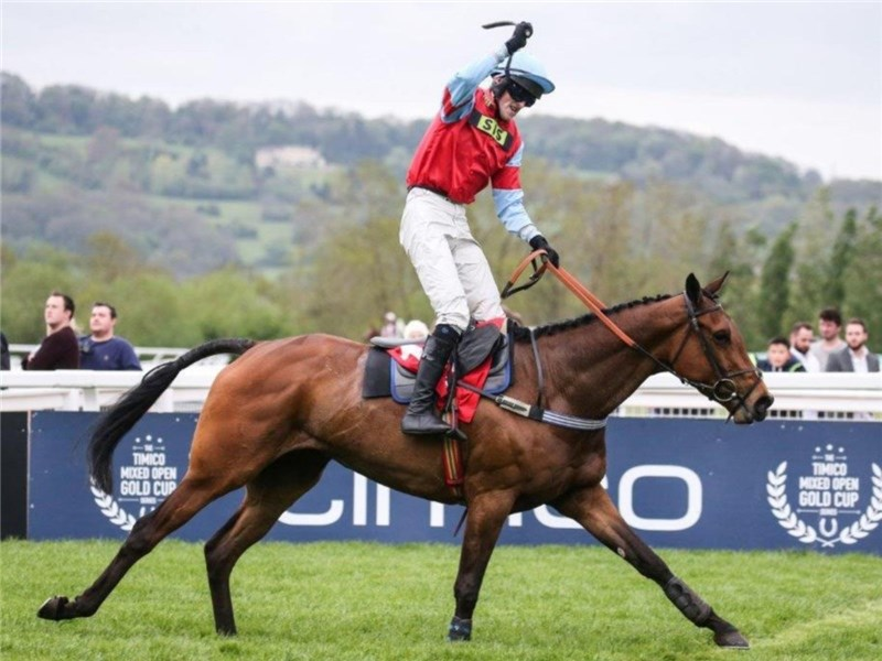 Martin McIntyre riding Anna Reed's horse, Woodfleet, to victory at Cheltenham.