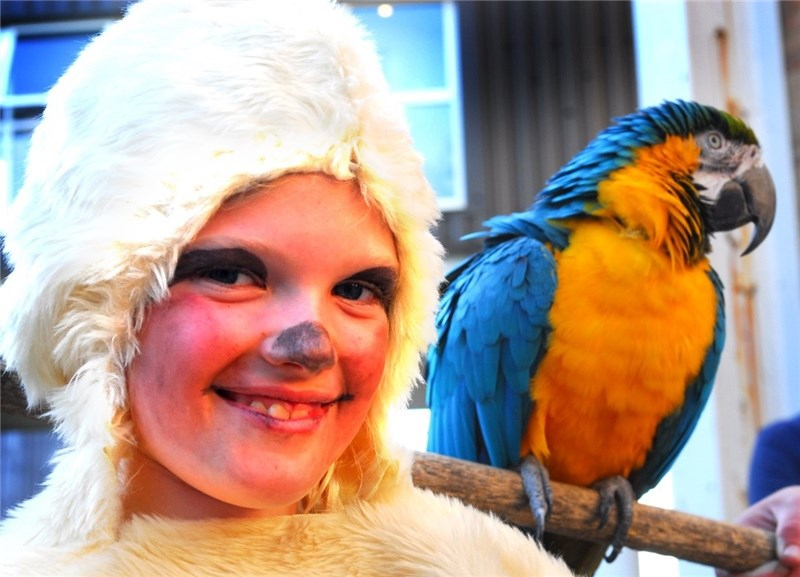 Arreton primary pupils with Amazon World animals who appeared in their school play