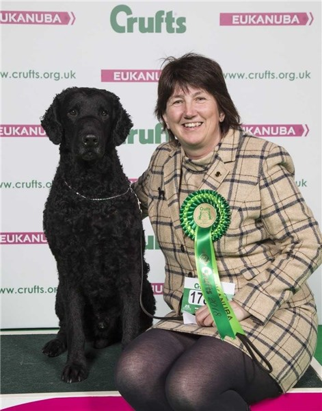 East Cowes dog scoops best of breed award at Crufts 2018 - Isle of Wight County Press 1