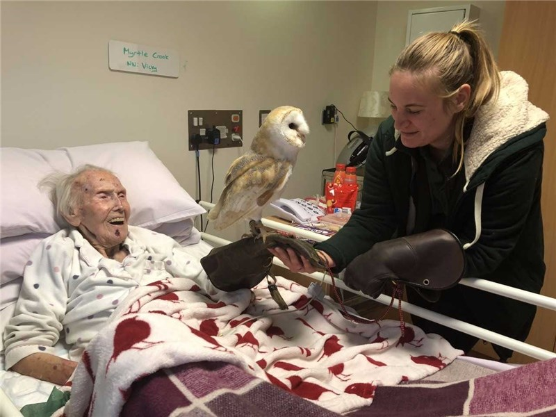 Myrtle Crook, 94, with Buzz the barn owl and Jo Ling, manager of Haven Falconry Bird of Prey Centre.